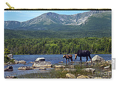 Moose Baxter State Park Maine 2 Carry-all Pouch