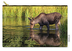 Carry-all Pouch featuring the photograph Moose Reflections by Mary Hone