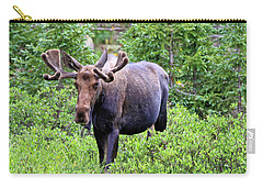 Carry-all Pouch featuring the photograph Moose Trail by Scott Mahon