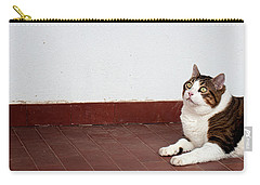 Carry-all Pouch featuring the photograph Morfeas by Laura Melis