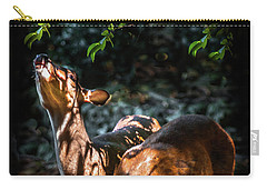 Morning Light Of Dawn Carry-all Pouch by Karen Wiles
