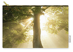 Morning Light Shining Down Carry-all Pouch
