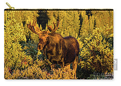 Morning Moose Carry-all Pouch by Steven Parker