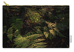 Carry-all Pouch featuring the photograph Morning On The Coastal Trail by Rick Berk