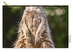Morning Sun Carry-all Pouch by Jamie Pham