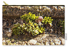 Moss And Pebbles Carry-all Pouch
