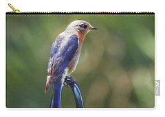 Mother Bluebird Carry-all Pouch