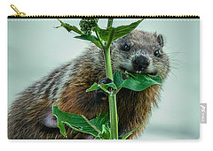 Mother Groundhog Fine Dining Carry-all Pouch by Bob Orsillo