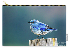 Mountain Bluebird 2 Carry-all Pouch