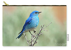 Mountain Bluebird Beauty Carry-all Pouch by Mike Dawson