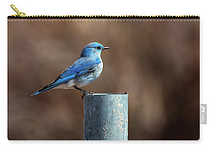 Mountain Bluebird Carry-all Pouch by Eric Nielsen