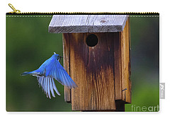 Mountain Bluebird Male Carry-all Pouch by John Roberts