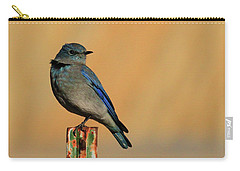 Mountain Bluebird Carry-all Pouch by Paul Marto