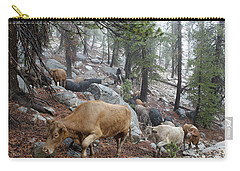 Mountain Climbing Carry-all Pouch by Diane Bohna