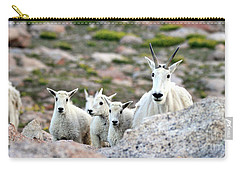 Carry-all Pouch featuring the photograph Mountain Goat Family Panorama by Scott Mahon