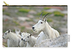 Carry-all Pouch featuring the photograph Mountain Goat Family by Scott Mahon