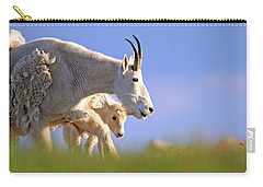 Carry-all Pouch featuring the photograph Mountain Goat Light by Scott Mahon