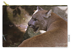Mountain Lion Carry-all Pouch