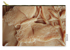 Mountain Meadow Original Clay Swallowtail Butterfly Detail Carry-all Pouch