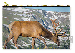 Mountain Top Elk Carry-all Pouch by John Roberts