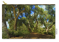 Carry-all Pouch featuring the photograph Mountain Way by Mark Blauhoefer