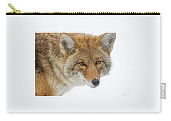 Mr. Coyote Carry-all Pouch