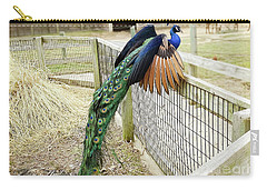 Mr. Flying Peacock Carry-all Pouch