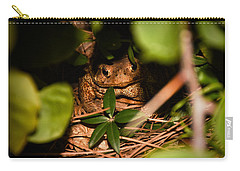 Mr Frog Carry-all Pouch by Alessandro Della Pietra