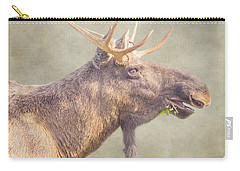 Mr Moose Carry-all Pouch by Roy McPeak