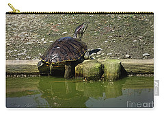 Mr. Turtle Carry-all Pouch by Melissa Messick