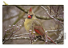 Carry-all Pouch featuring the photograph Mrs Cardinal by Douglas Stucky