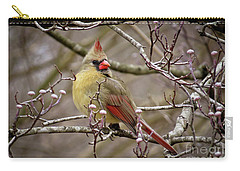 Carry-all Pouch featuring the photograph Mrs Cardinal II by Douglas Stucky