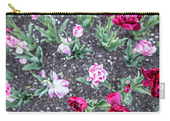 Msu Spring 18 Carry-all Pouch by John McGraw