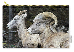 Mt Sheep  Carry-all Pouch