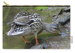 Carry-all Pouch featuring the photograph Muddy Mallard by Kathy Kelly