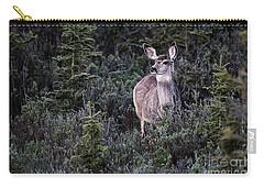 Mule Deer Doe Carry-all Pouch