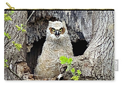 Muppet Carry-all Pouch