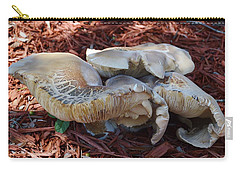 Mushroom Evolution Carry-all Pouch by Warren Thompson