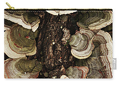 Carry-all Pouch featuring the photograph Mushroom Shells By The Lake Shore by Kim Henderson