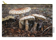Mushroom Trio Macrolepiota Procera Carry-all Pouch by Frank Wilson