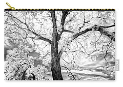 Carry-all Pouch featuring the photograph Music Moves The Soul by Dan Jurak
