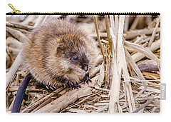 Muskrat Ball Carry-all Pouch