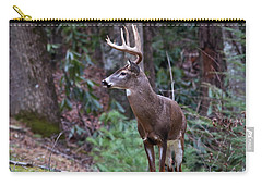 Carry-all Pouch featuring the photograph My Best Side by Douglas Stucky