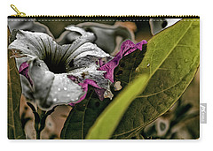 My How Your Beauti Is Evolving Carry-all Pouch