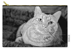 Carry-all Pouch featuring the photograph My True Love Revisited by Luther Fine Art