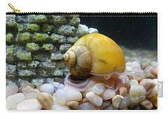 Carry-all Pouch featuring the photograph Mystery Snail by Robert Knight