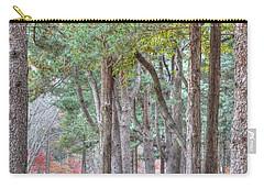 Nami Island Korea Carry-all Pouch