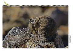 Napping American Pika - 4694 Carry-all Pouch
