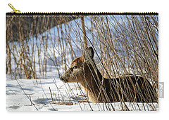 Napping Fawn Carry-all Pouch by Brook Burling