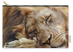 Napping Carry-all Pouch by Lisa L Silva
